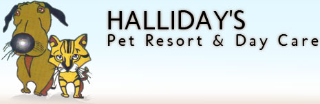 Halliday's Pet Resort & Day Care